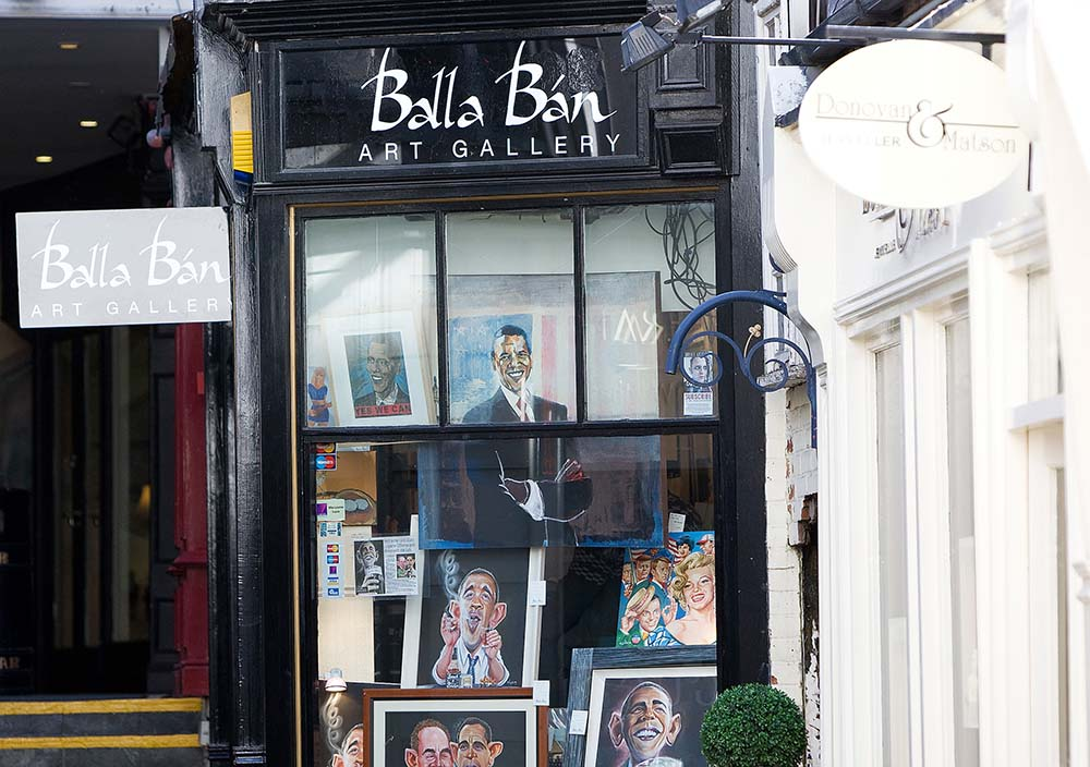 Irish Picture Gallery